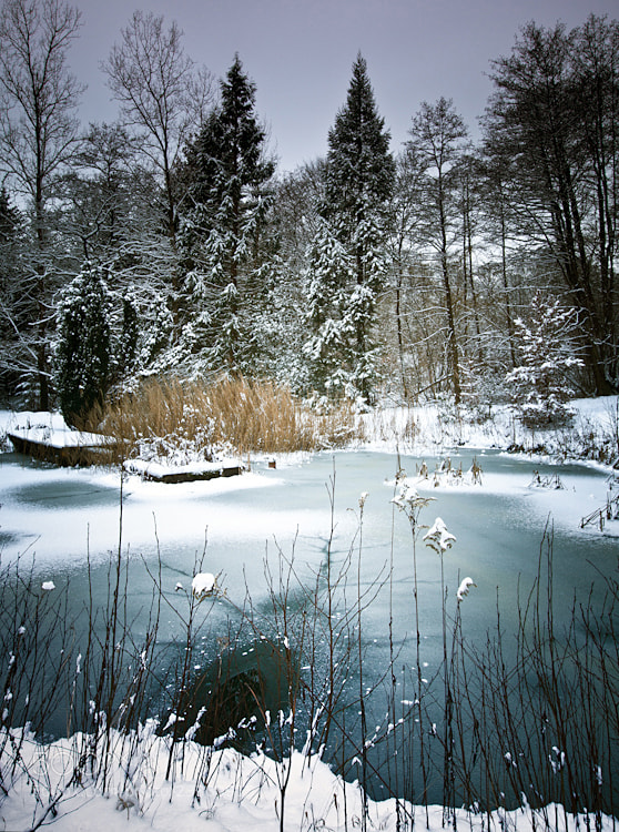 Photograph Untitled by Carole Kieffer on 500px