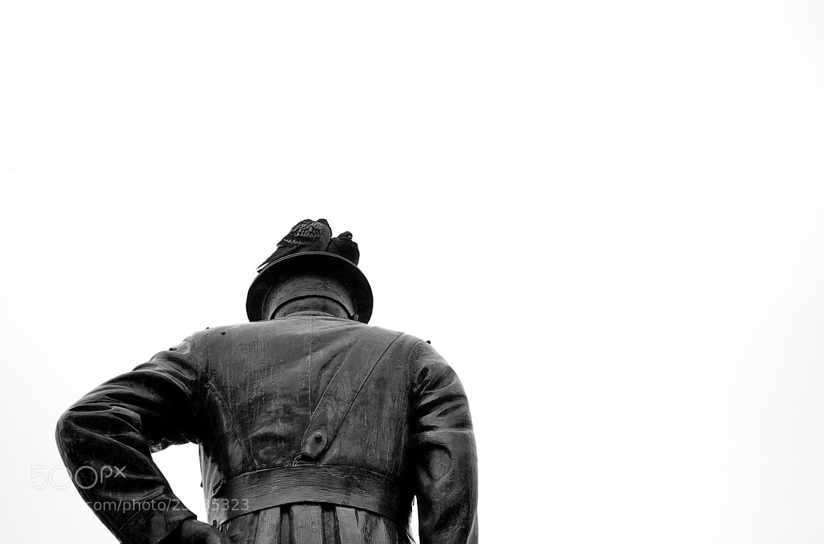 Photograph Still as a statue by John Chilwell on 500px