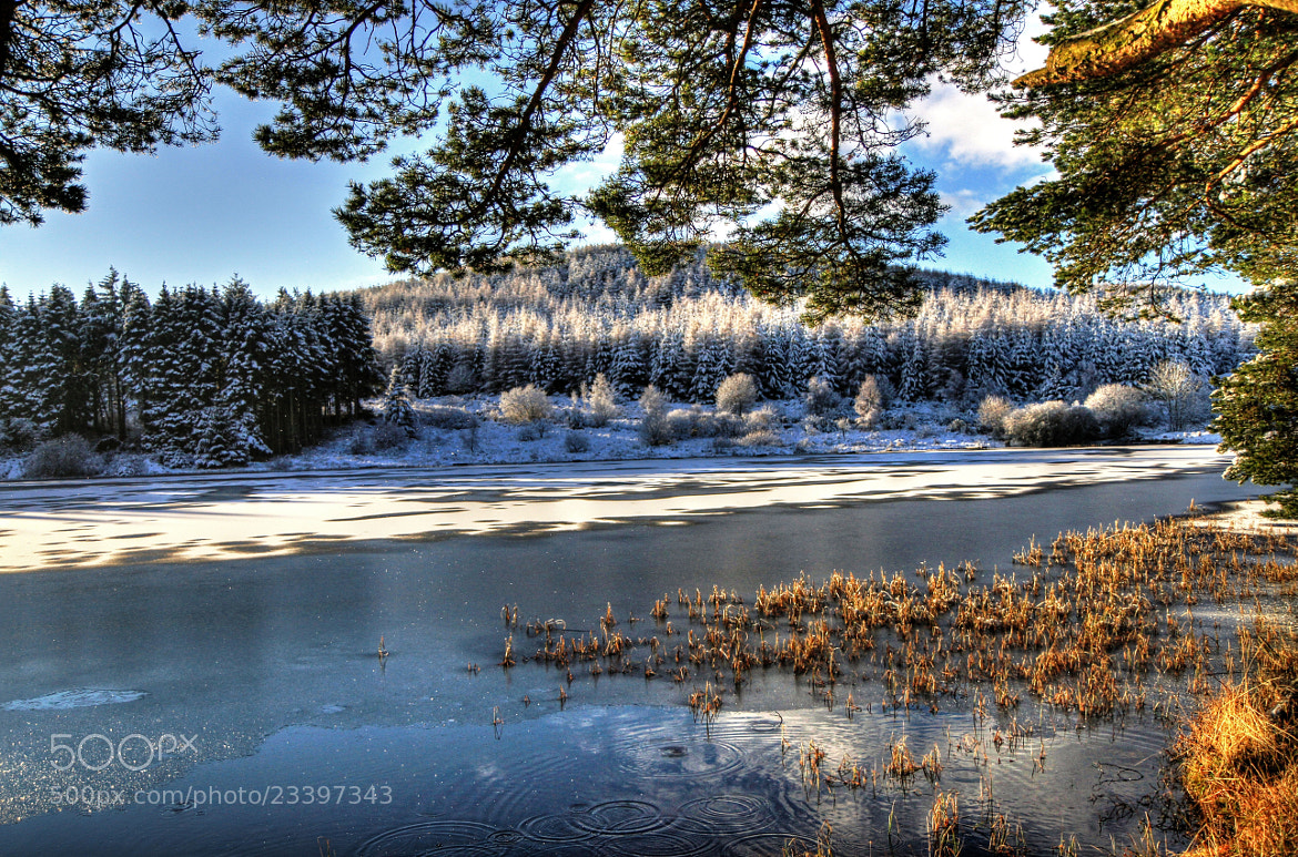 Photograph Cold Day At Lairds Loch 2 by Hilda Murray on 500px