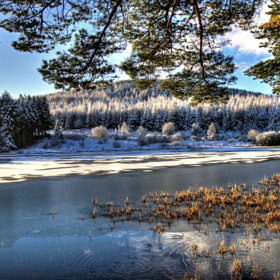 Cold Day At Lairds Loch 2 by Hilda Murray (HildaMurray)) on 500px.com