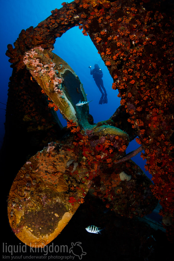 Photograph Hilma Hooker propeller #1 by Kim Yusuf on 500px