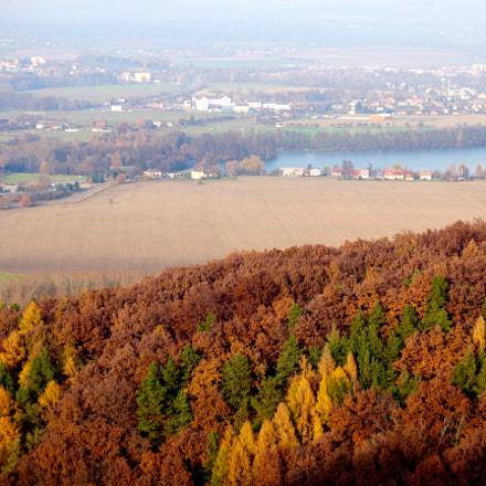 Autumn Leaves in Czech Republic