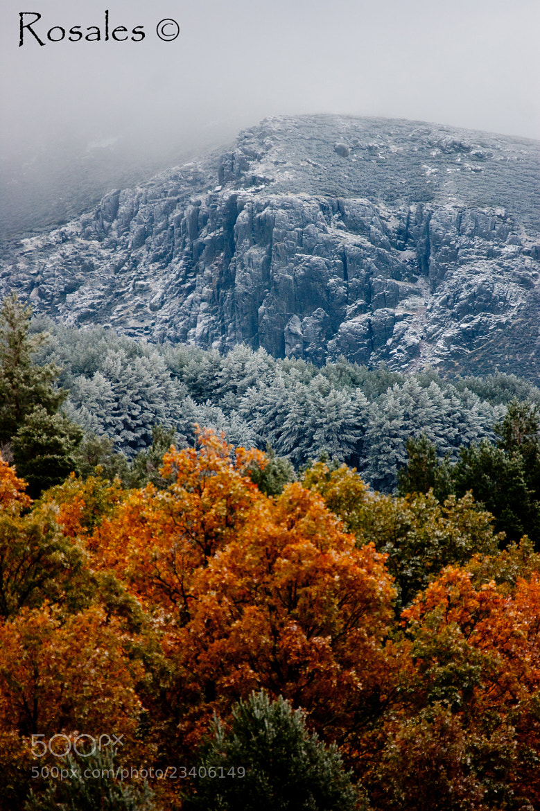 Photograph Winter is Coming by Ruben Rosales on 500px