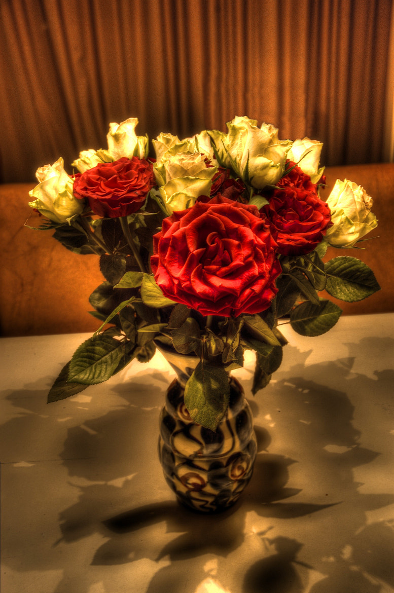 Photograph Roses by Kenneth Gysting on 500px