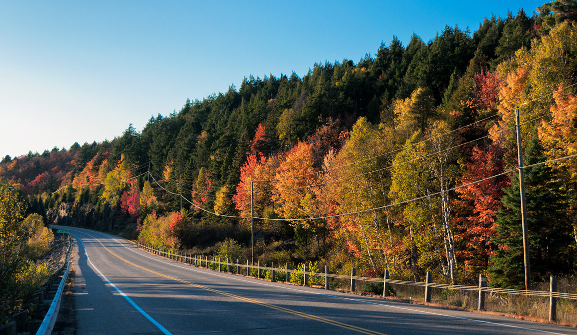 Photograph Hwy 60 by Frank Lemire on 500px