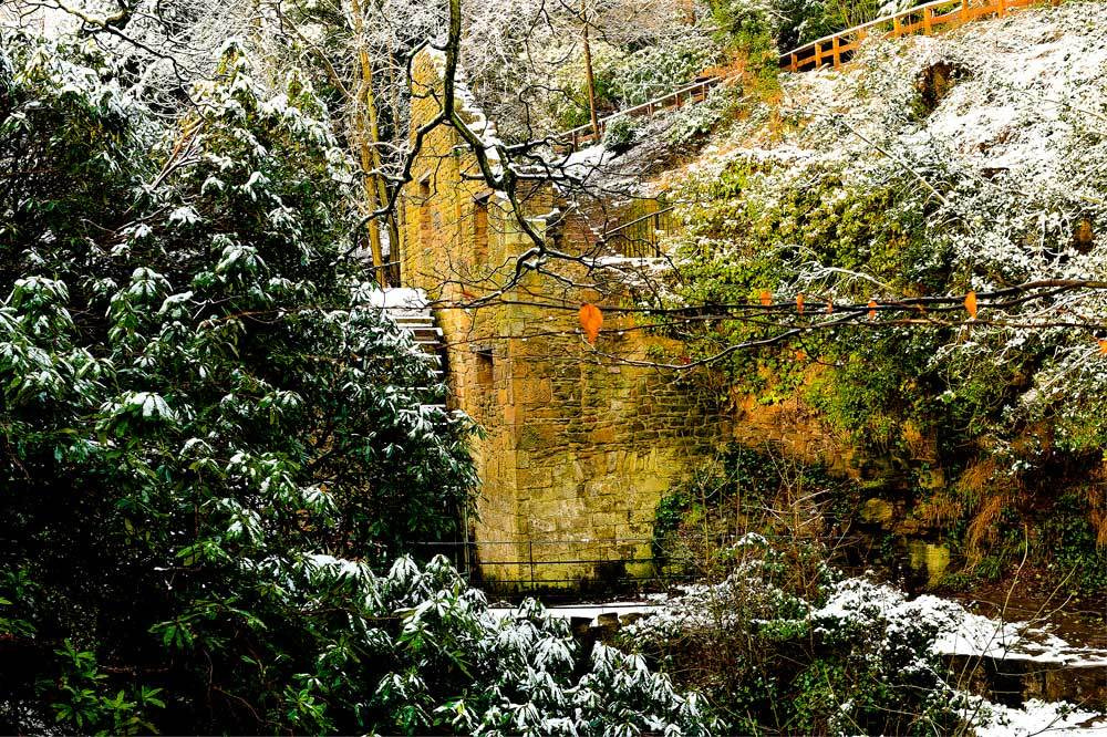 Photograph The Old Mill_Jesmond Dene by Terry Cavner on 500px