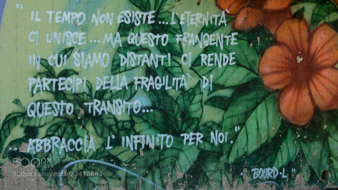 Photograph Poetry by Mariano Trissati on 500px