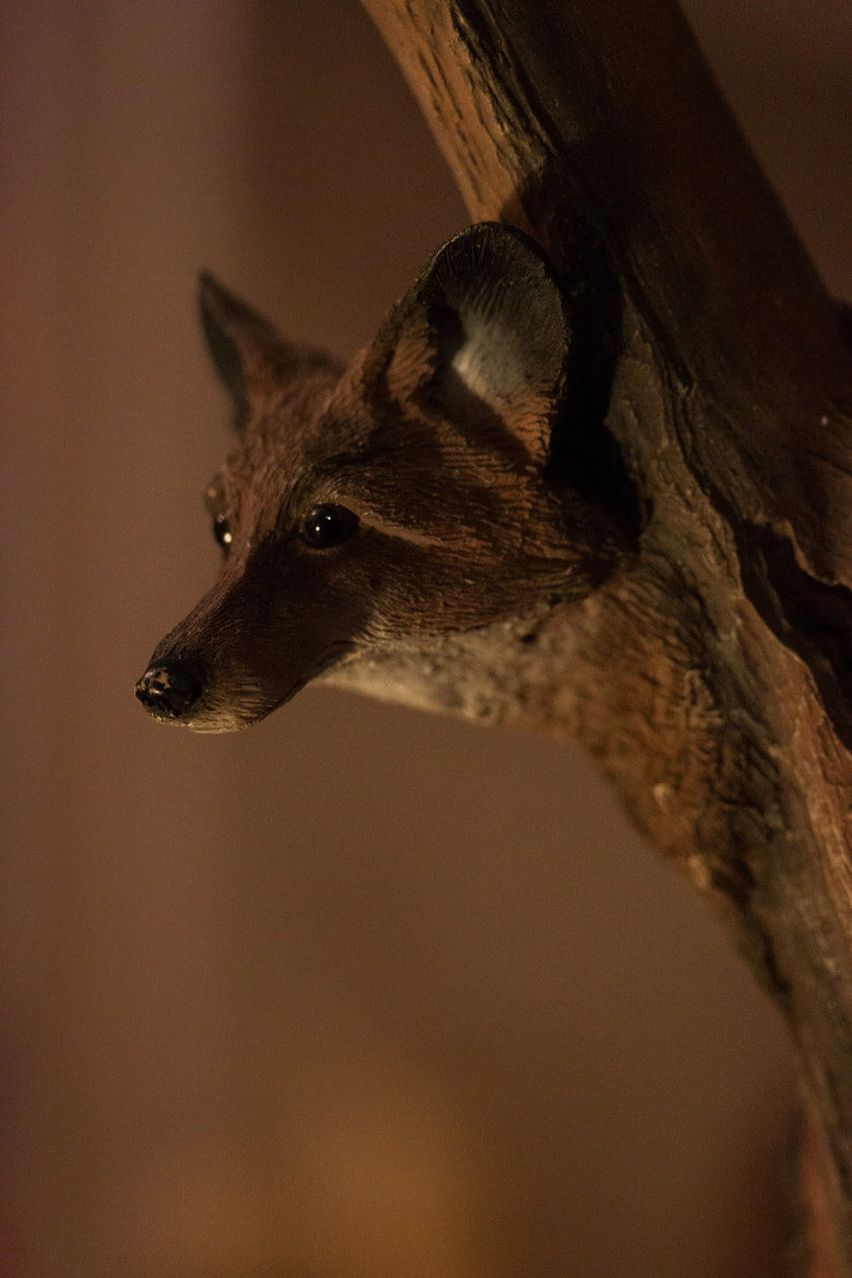 Photograph Day 6 - Totem by Daniel Yates on 500px