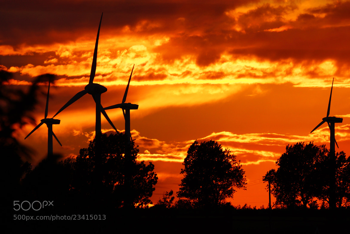 Photograph Sunset 2 by DAVID GAHAN on 500px