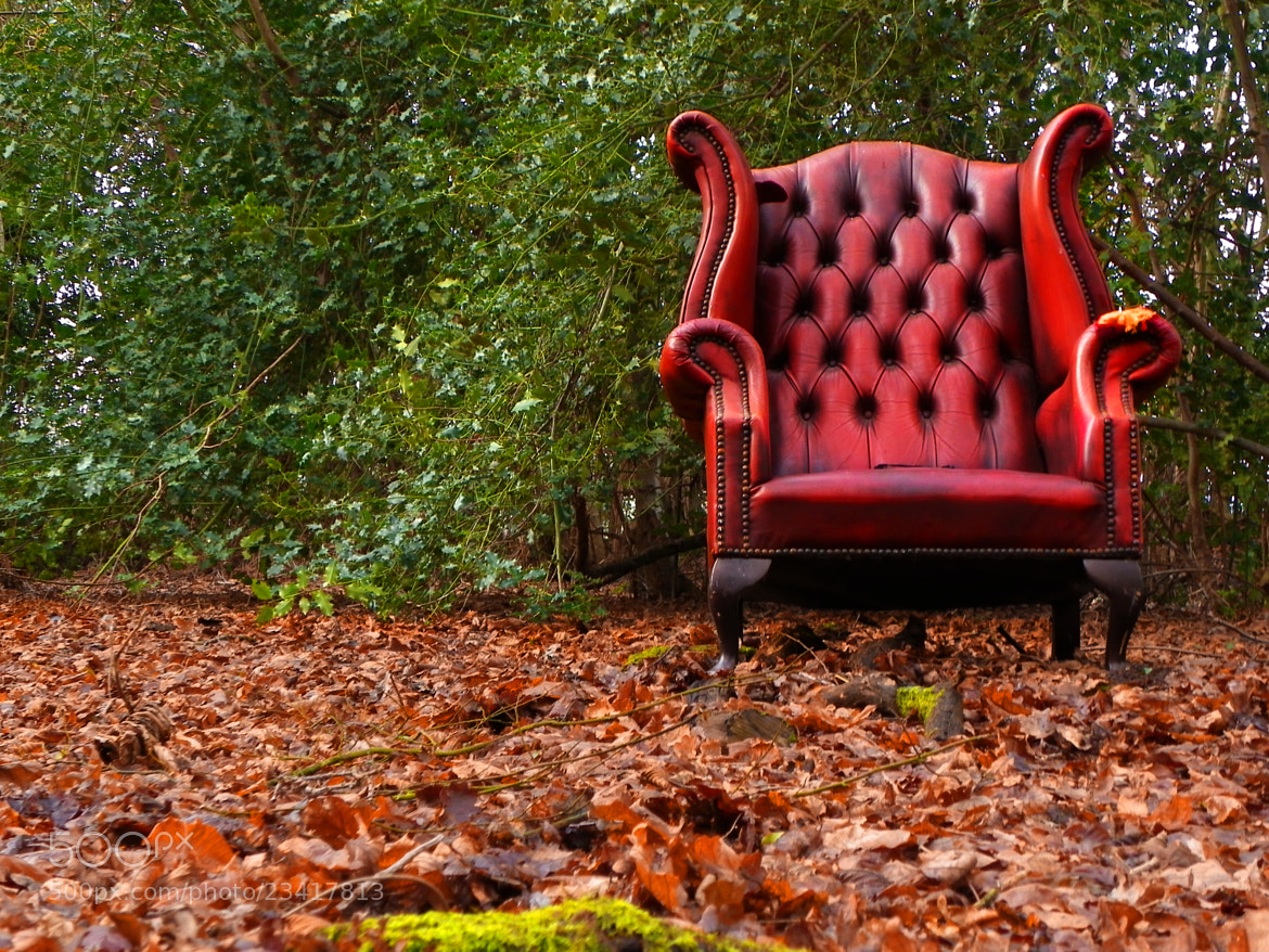 Photograph Nature's Seat by Steve Campbell on 500px