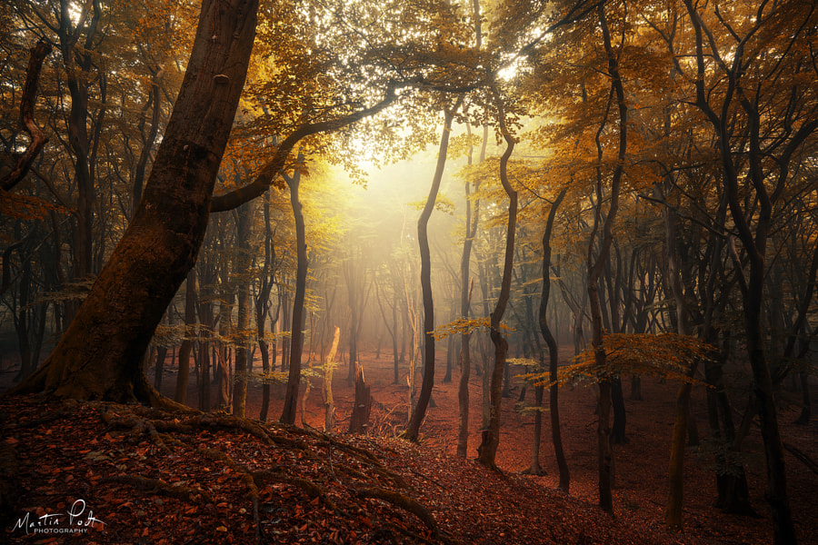 World alone by Martin Podt on 500px.com