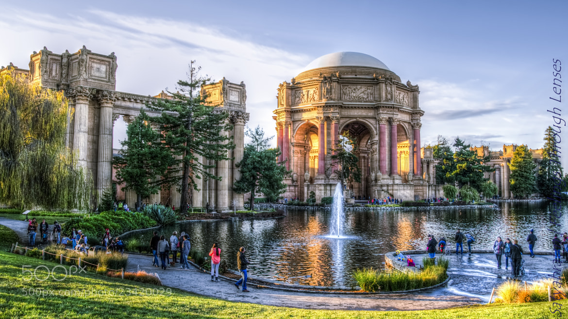 Photograph The Art Museum, SFO. by Satya M on 500px
