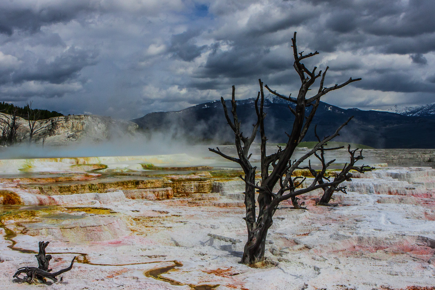 Photograph Mammoth Hot Springs by Michael Backes on 500px