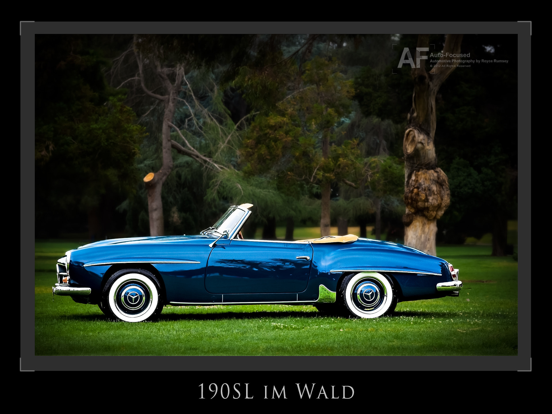 Photograph 190SL in the Woods by Royce Rumsey on 500px