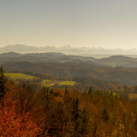 View from Schauenberg Ruins