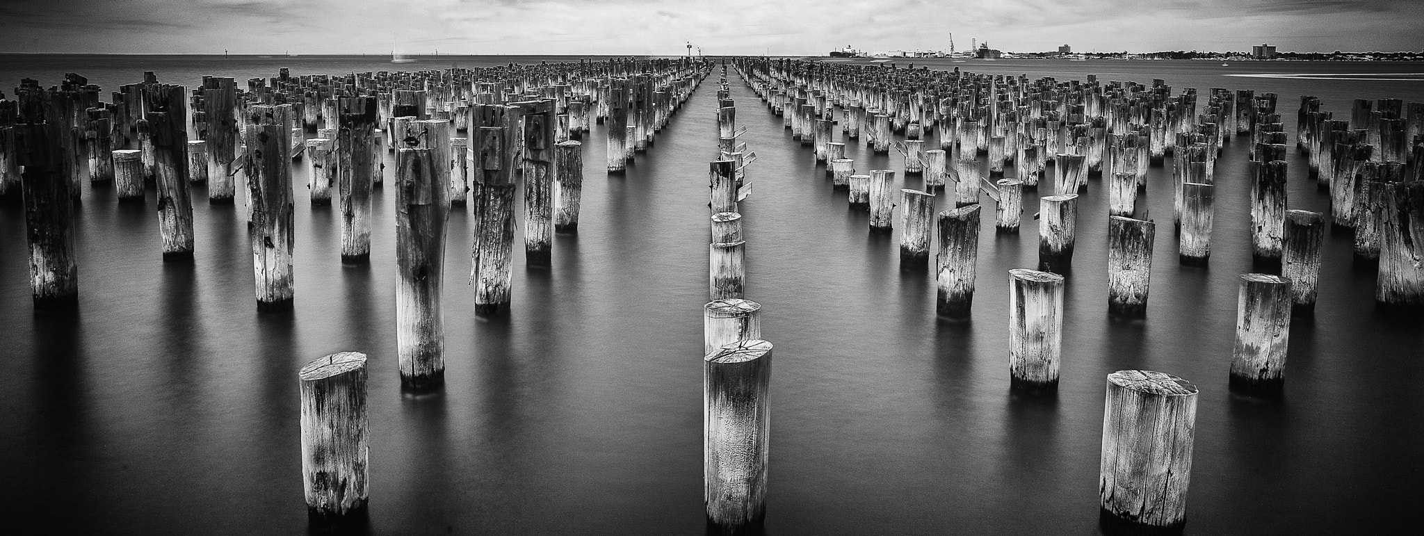 Photograph Princes Pier 1 by Margaret Morgan on 500px