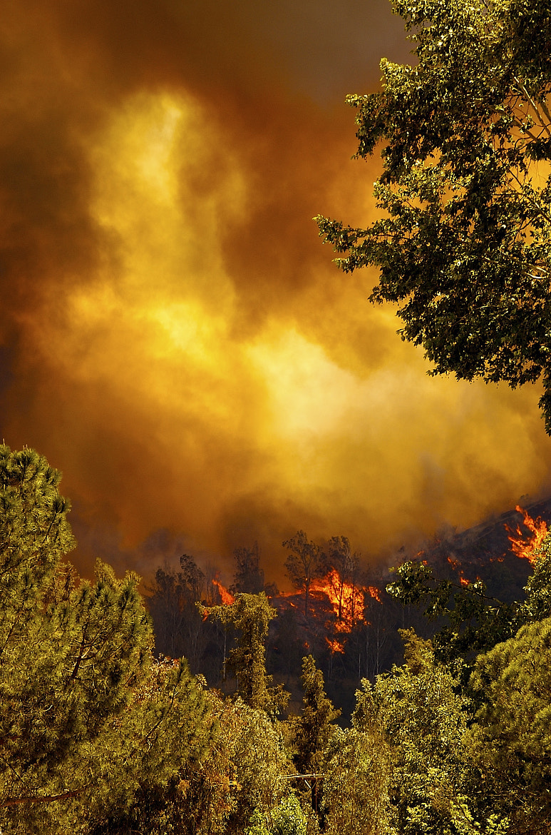 Photograph 2007 Fire by Danny Perez on 500px