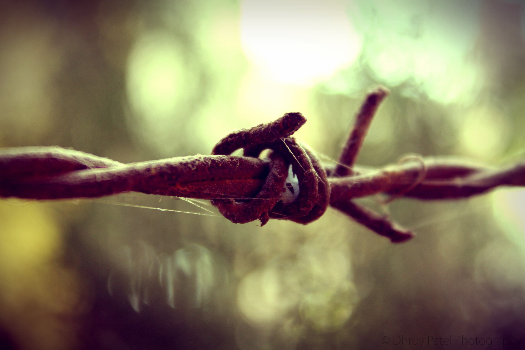 Photograph Barbed Wire by Dhruv Patel on 500px