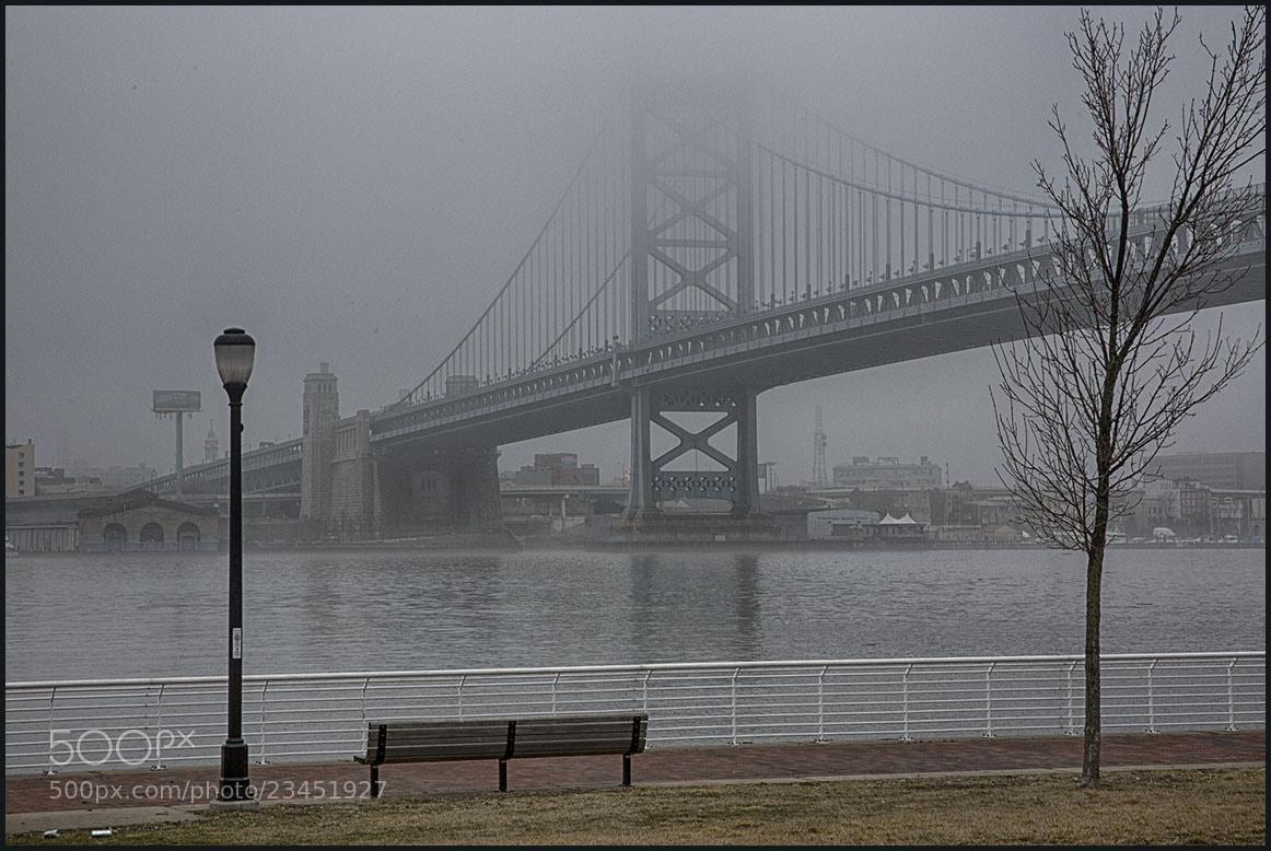 Photograph Fog on the Bridge. . . by Sonny Hamauchi on 500px