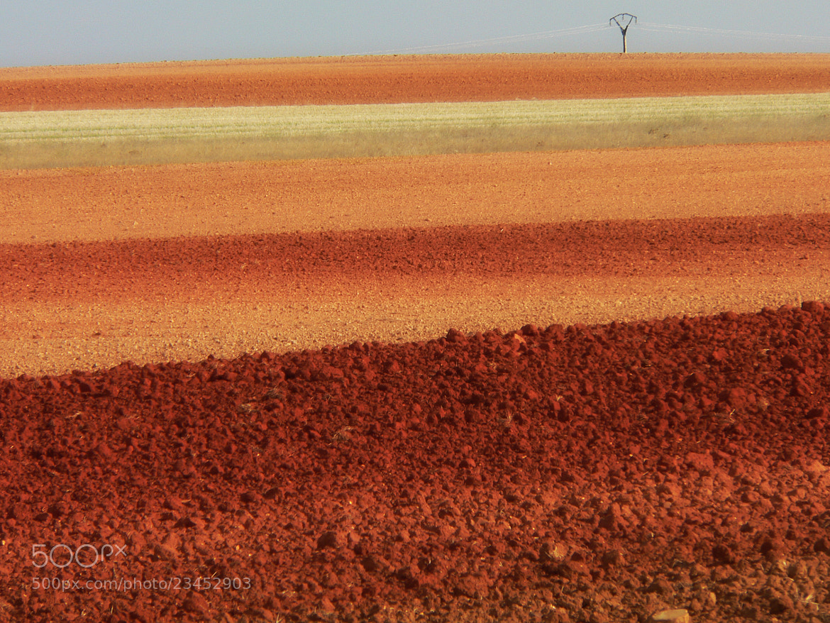 Photograph red fields by kiminur lurra on 500px