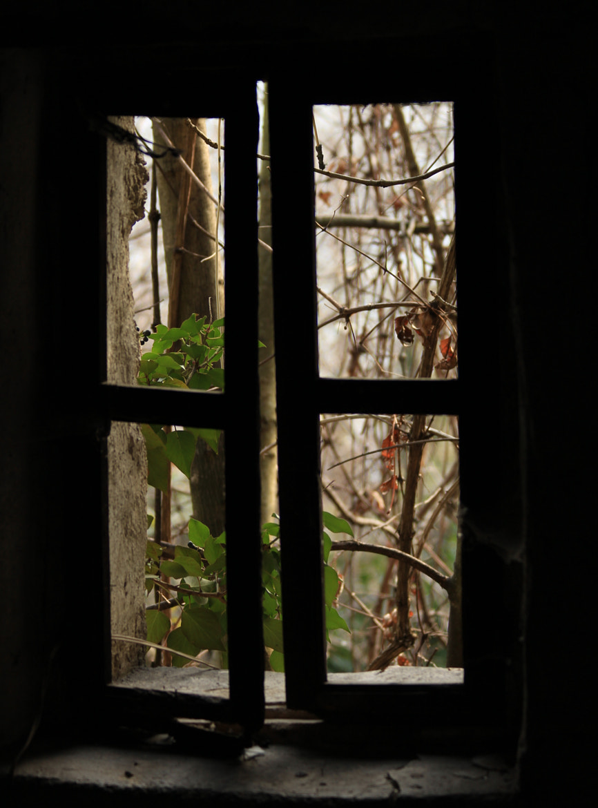 Photograph inside or outside by Paola Fiore on 500px