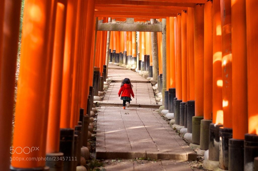 Photograph Untitled by Kazuya Suzuki on 500px