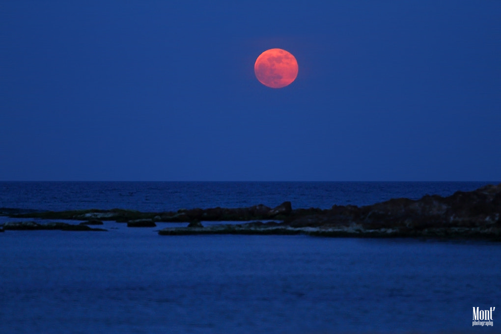 Photograph red moon by Fabio Montalto on 500px