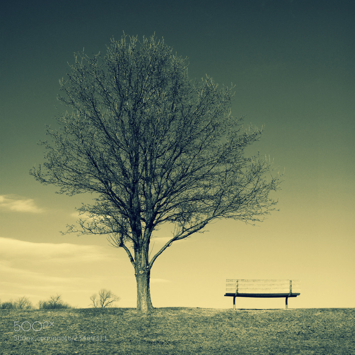 Photograph Solitude by JC Shamrock on 500px