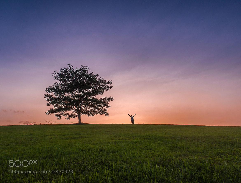 Photograph Lone Tree by subra govinda on 500px