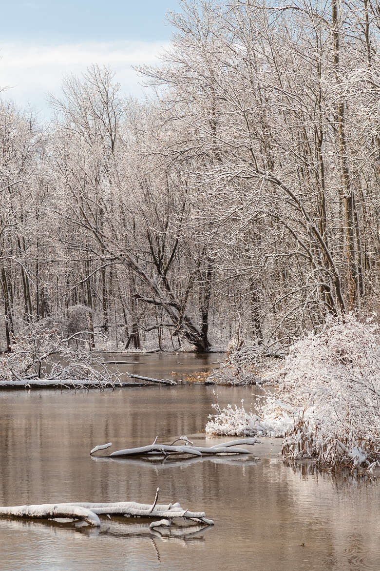 Photograph Winter on the Creek by Michael Lishansky on 500px