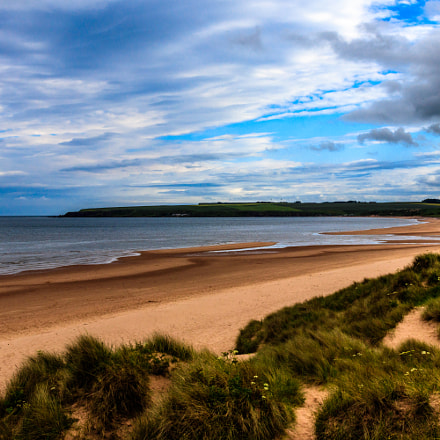 1052: Beach at Lunan Bay