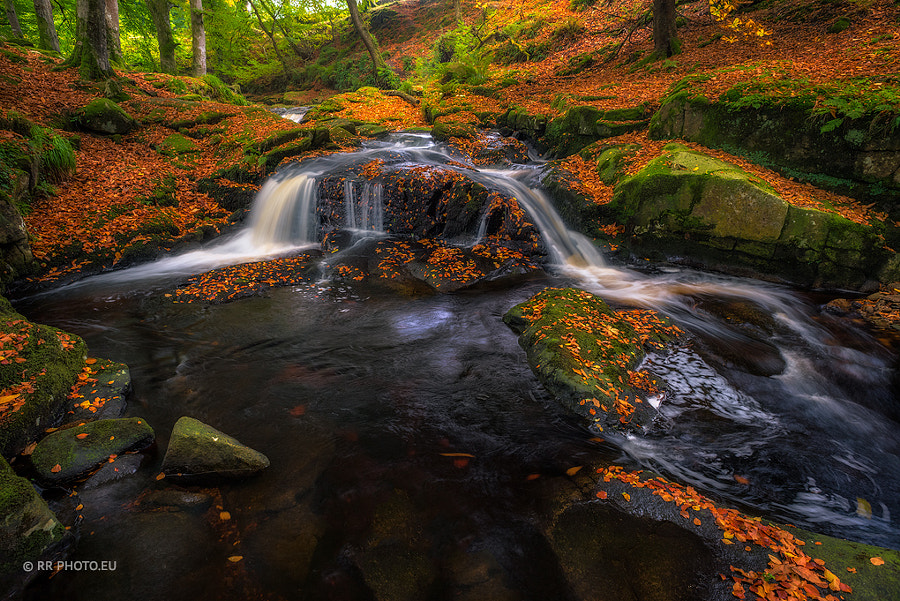 Cloghleagh River in Wicklow Mountains - Ireland 🇮🇪 by Rafal Różalski on 500px.com