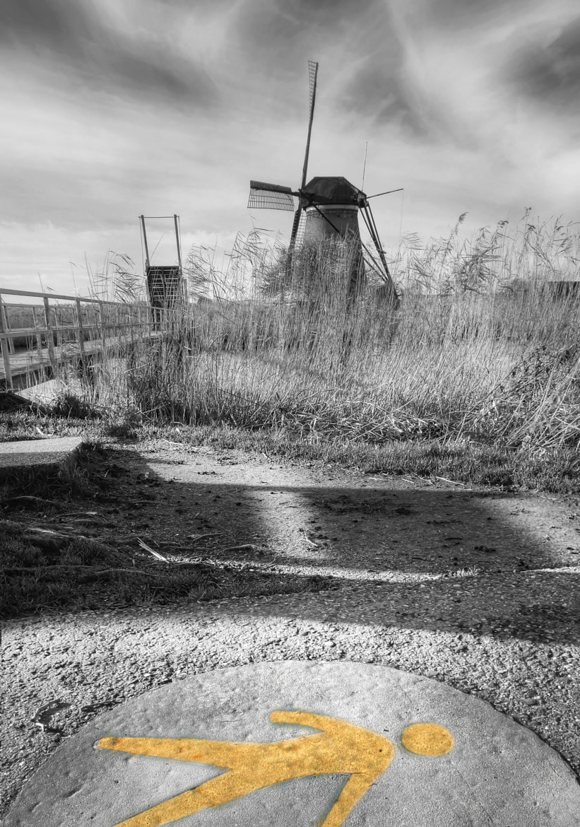 Photograph not everything is b&w by Patrick Strik on 500px