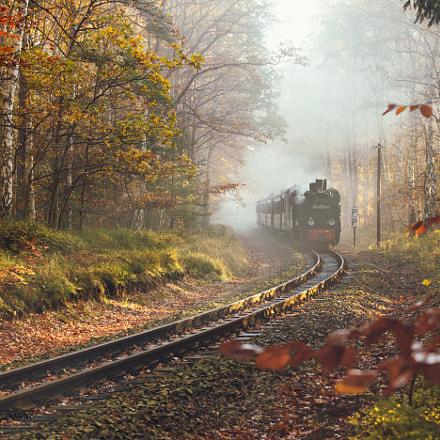 Herbstfahrt