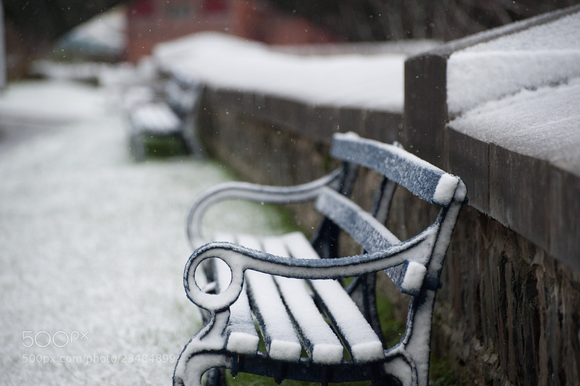Photograph Snow Falling on Benches by Craig Kirkwood on 500px