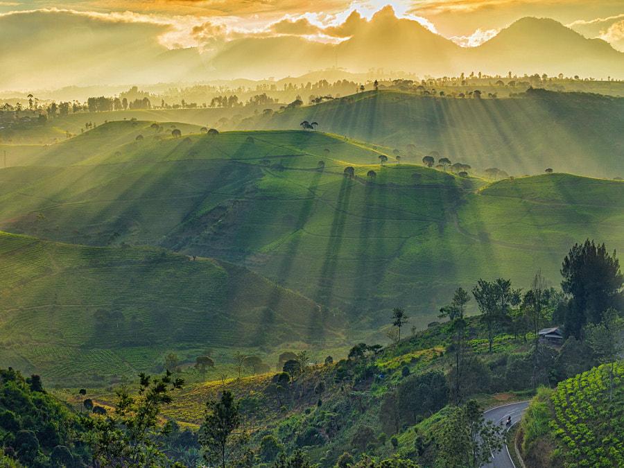 Glorious Rays of Light by Kristianus Setyawan on 500px.com