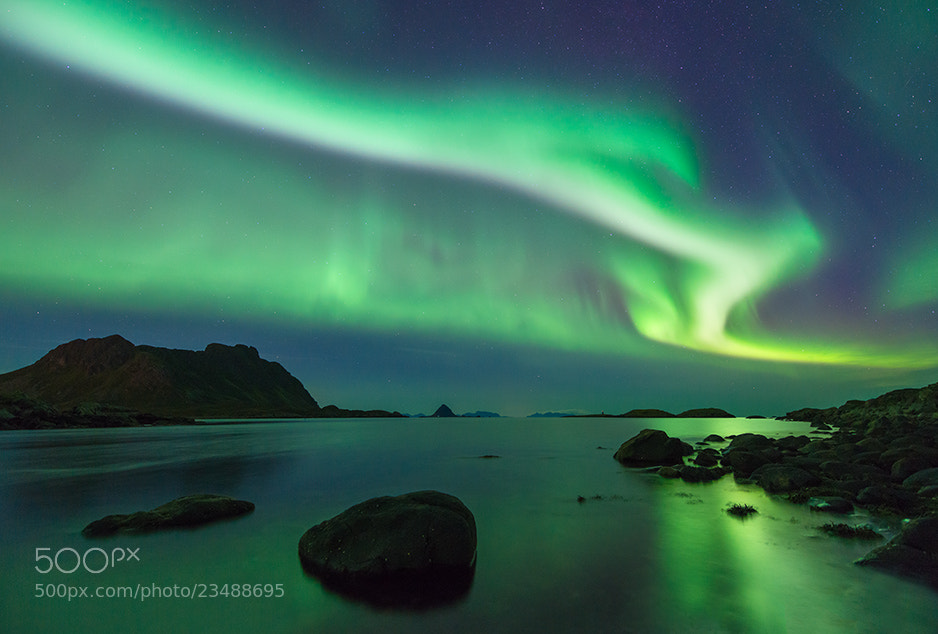 Photograph Auroras over Skarvagen by Øystein Lunde Ingvaldsen on 500px