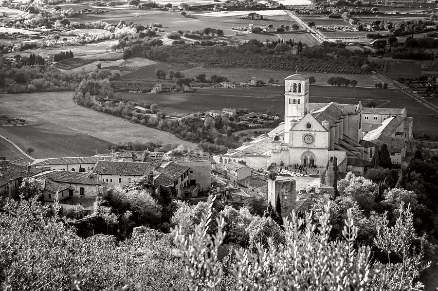 Assisi B&W VIII - San Francesco