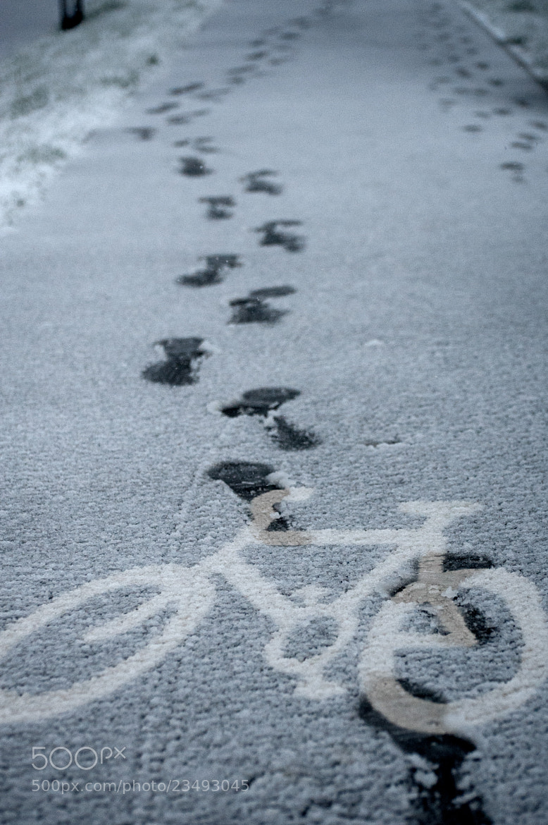 Photograph Icy Bike Path by Craig Kirkwood on 500px