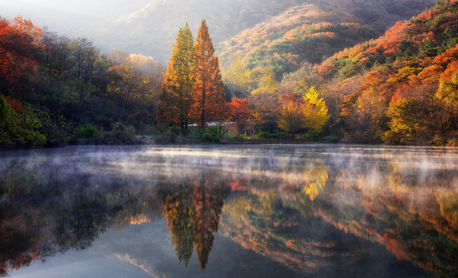 Wonderful Morning, автор — Jaewoon U на 500px.com