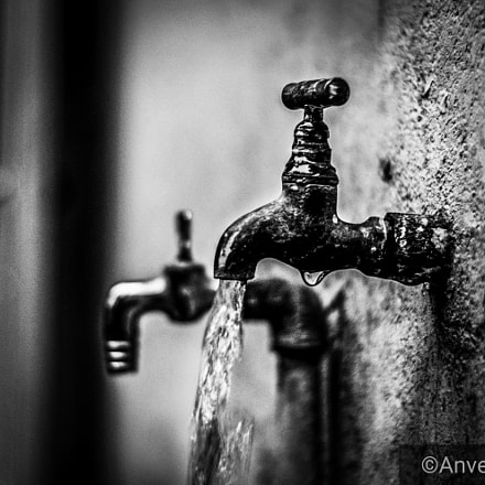 The Water Tap