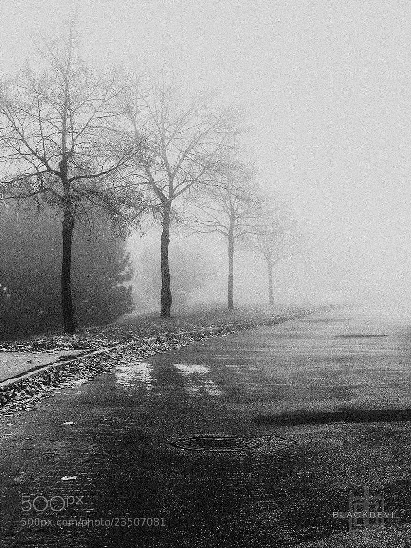 """Photograph Fog by Tomáš """"BLACKDEVIL"""" Špánik on 500px"""