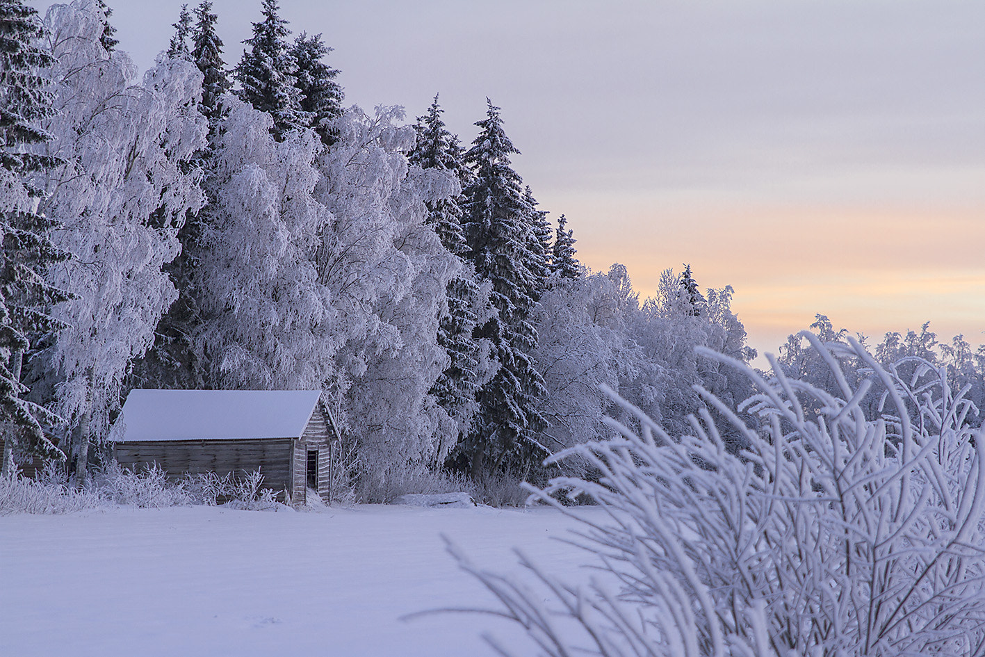 Photograph Winter in Finland by ulrica wiik on 500px