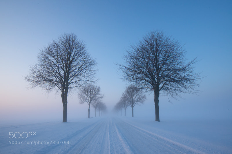 Photograph Winter road by Magnus Wallon on 500px