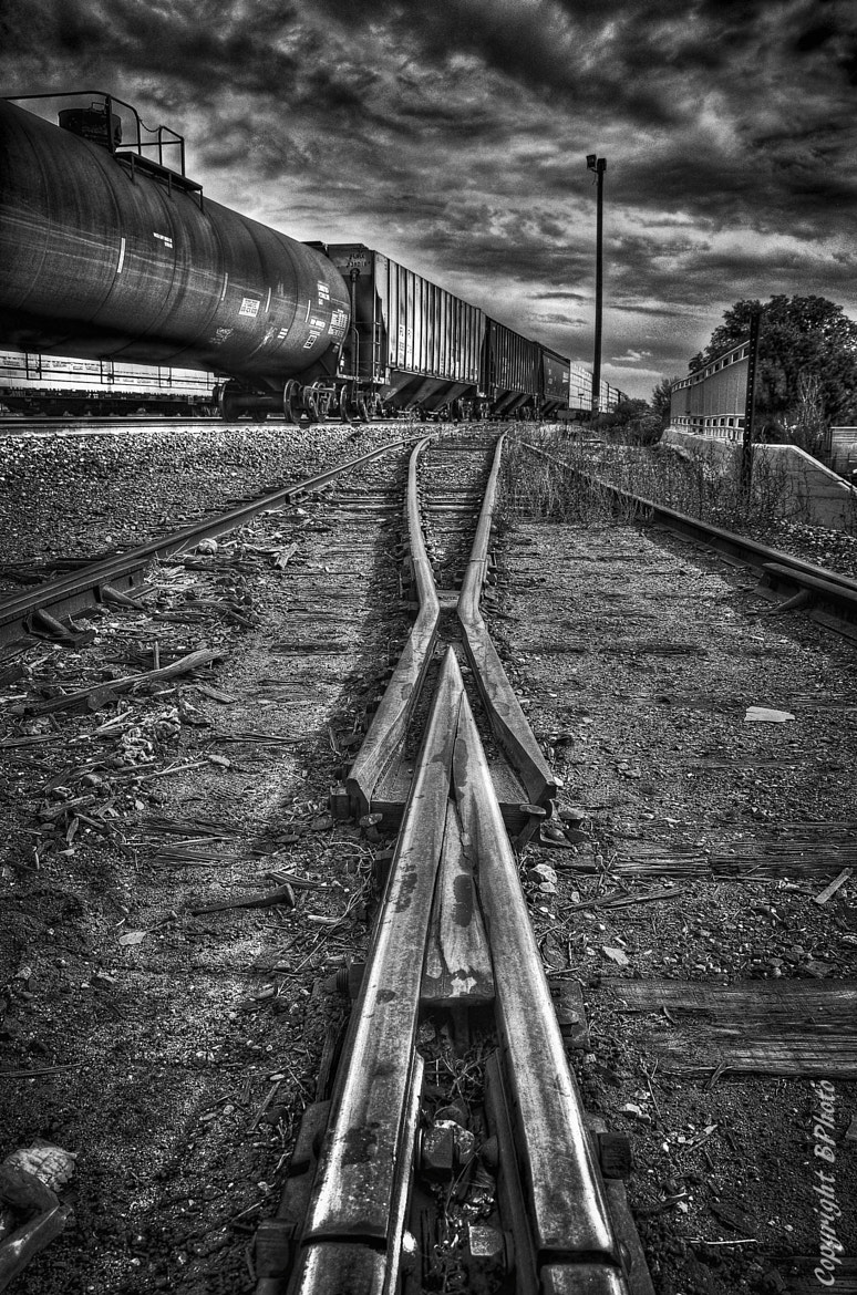 Photograph 2 paths by bob perkins on 500px