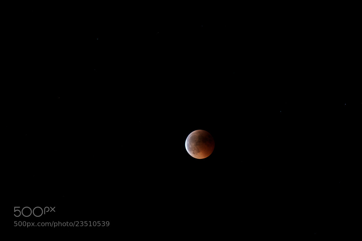 Photograph Red Moon 3 by Günter Glück on 500px