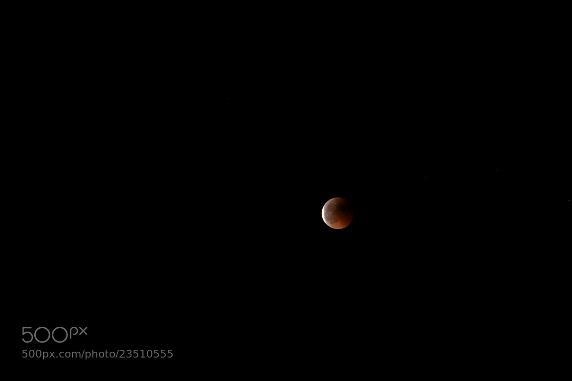Photograph Red Moon 4 by Günter Glück on 500px
