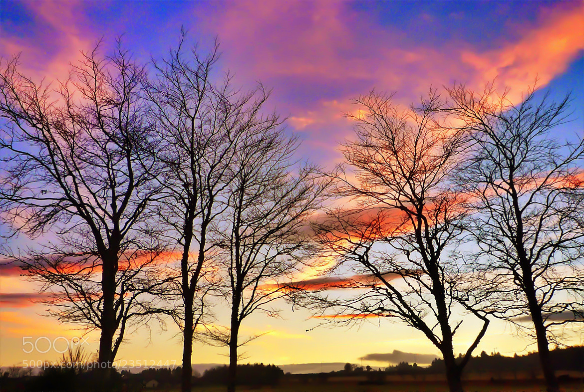 Photograph Winter red sky by Sarah Hughes on 500px