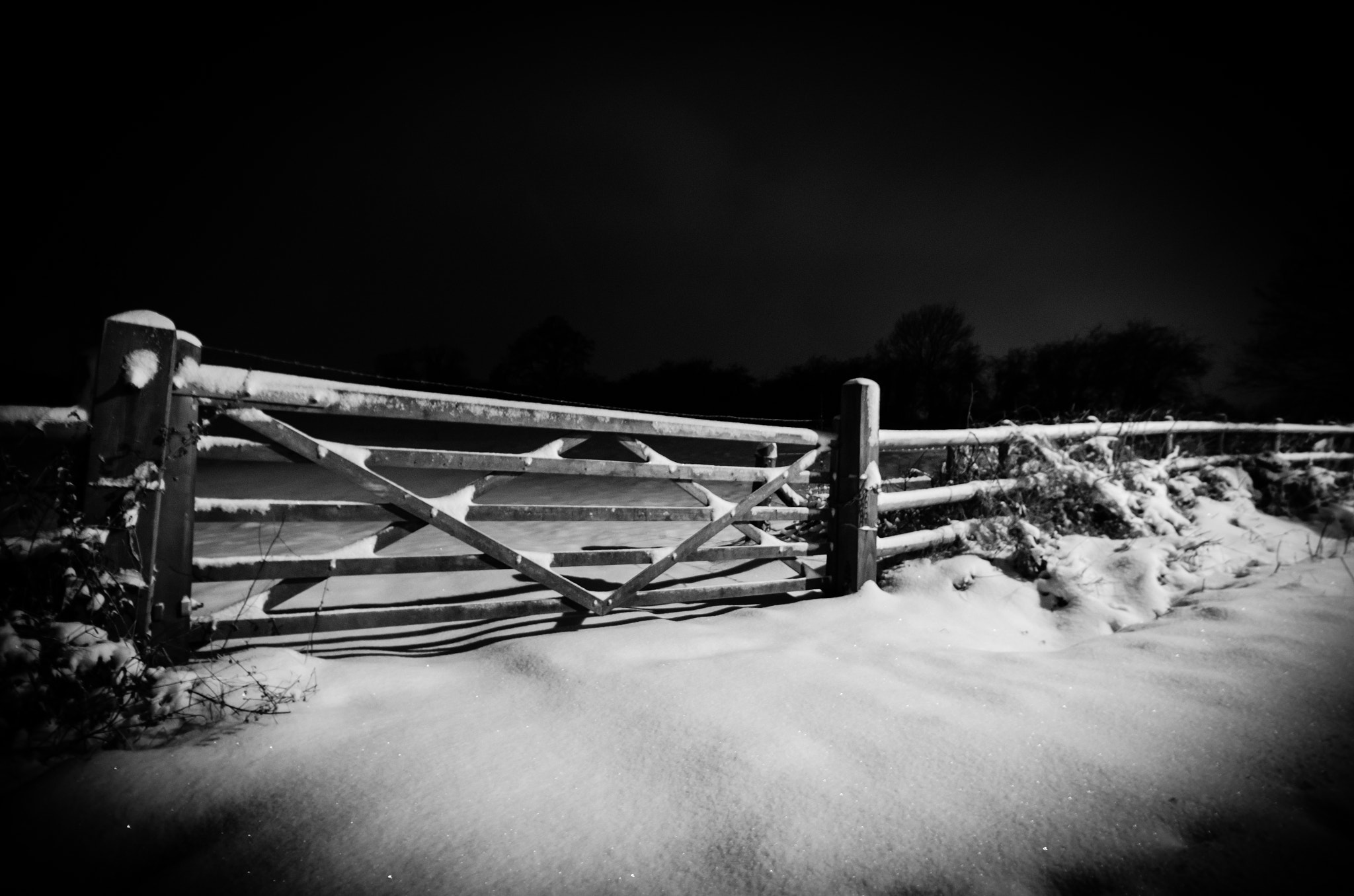 Photograph 18:365 - Snow by Gary   on 500px