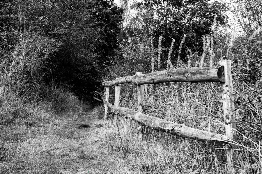 Photograph Old Fence by Matthew Barnett on 500px